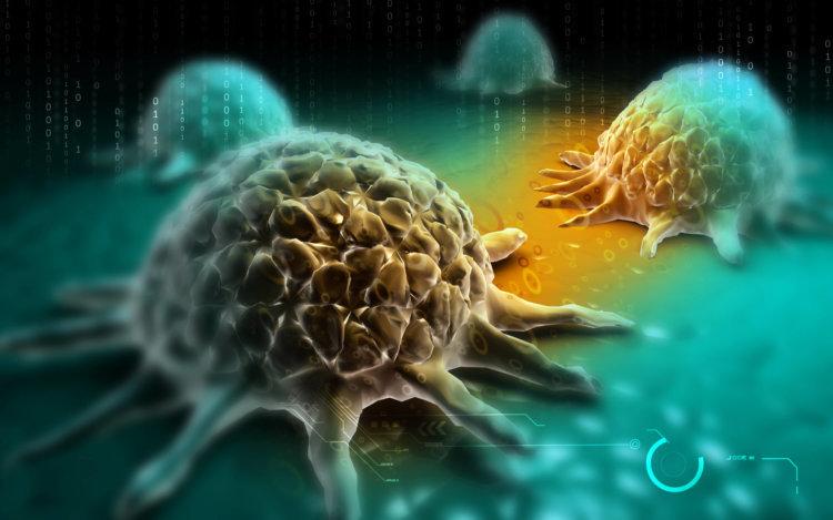 Лучший способ защитить себя от рака