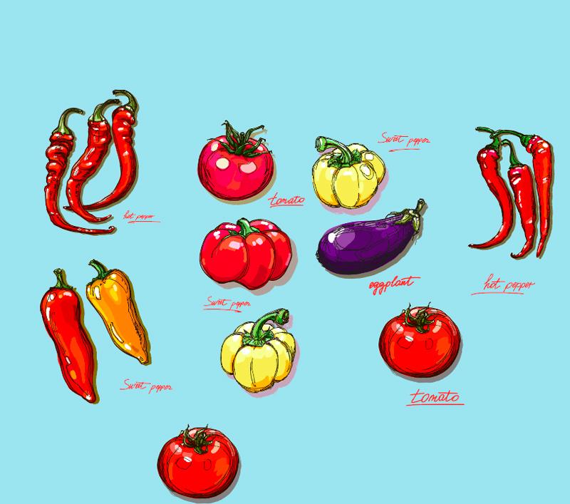 Кому нельзя помидоры: другой взгляд на пасленовые