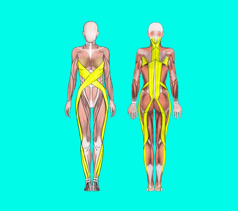 Упражнения, которые помогут держать себя в форме: ТОП-5