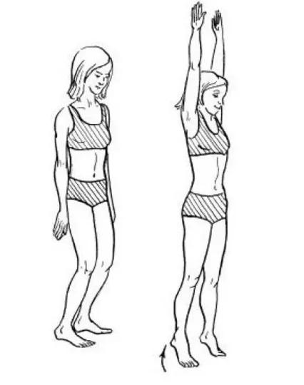 Борьба с варикозным расширением вен: эффективная гимнастика