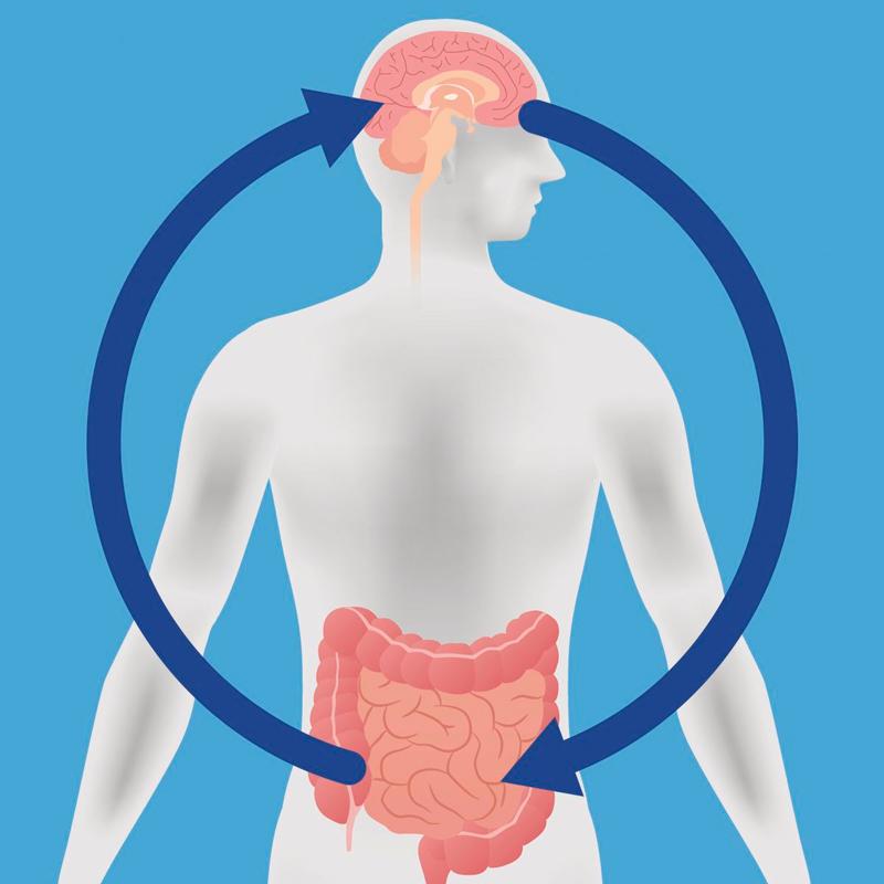 Как состояние кишечника влияет на женское здоровье