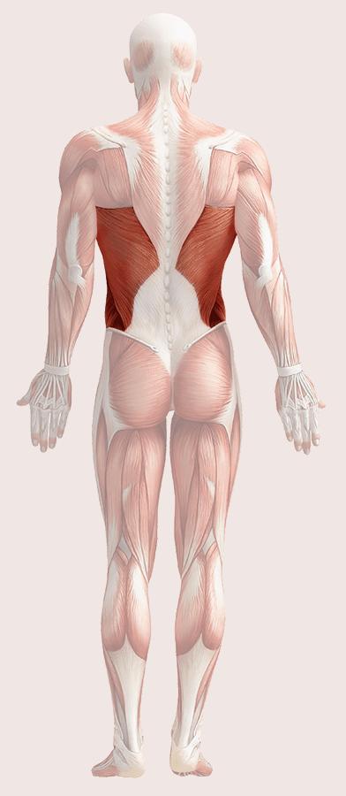Самоисцеление: Наше тело — лучший лекарь
