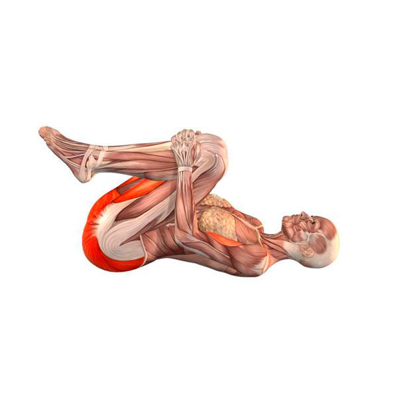 6 упражнений для улучшения пищеварения