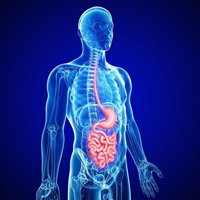 Как распознать воспалительный процесс в организме?