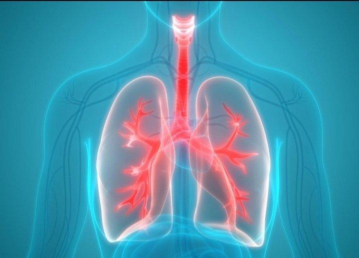 Методика Кофлера: трехфазное дыхание для укрепления иммунитета