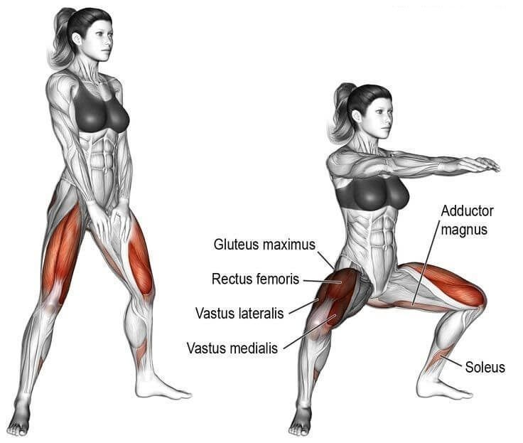 Leg Exercises: Top 7