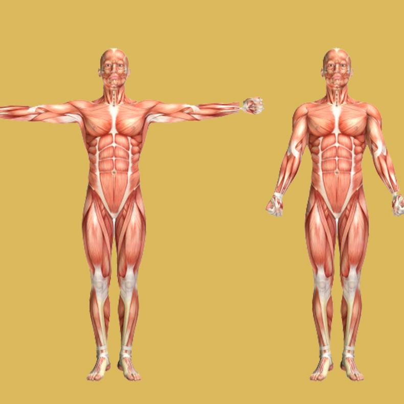 9 странных подсказок организма, что у вас может быть дефицит белка