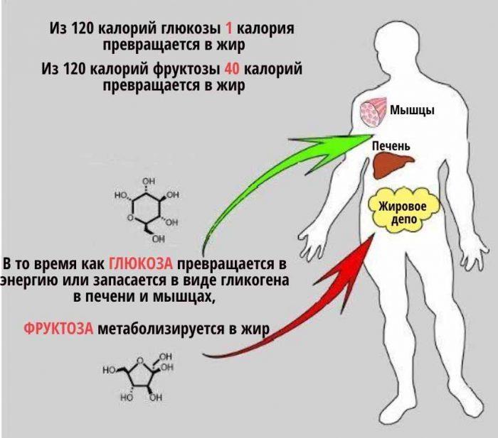 Фруктоза – самый сладкий и самый вредный сахар