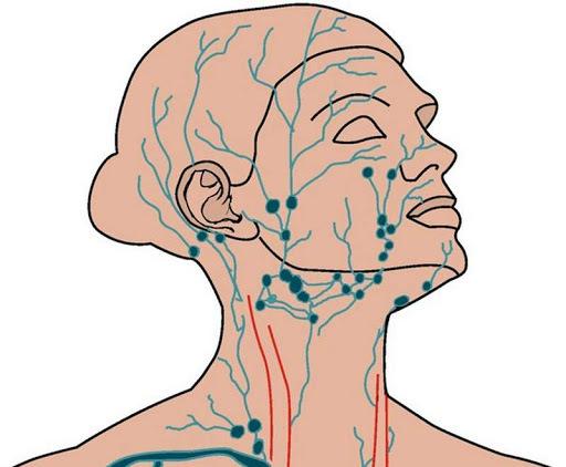 Как избежать застоя лимфы в организме