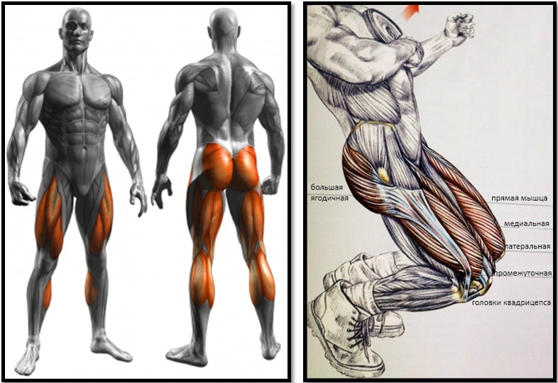 Squats: The 9 Most Helpful Exercises