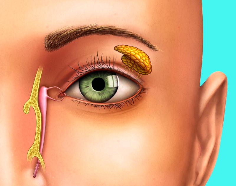 Как восстановить зрение: метод академика Юрия Утехина