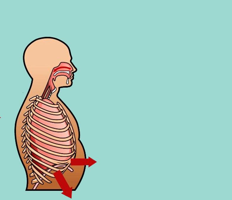 Дыхательные практики для оздоровление внутренних органов