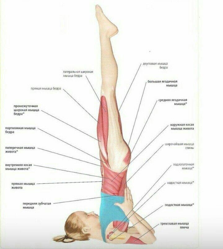 12 упражнений, которые помогут при бессоннице