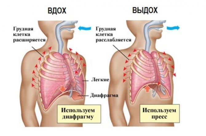 Дыхательная гимнастика для предупреждения панкреатита