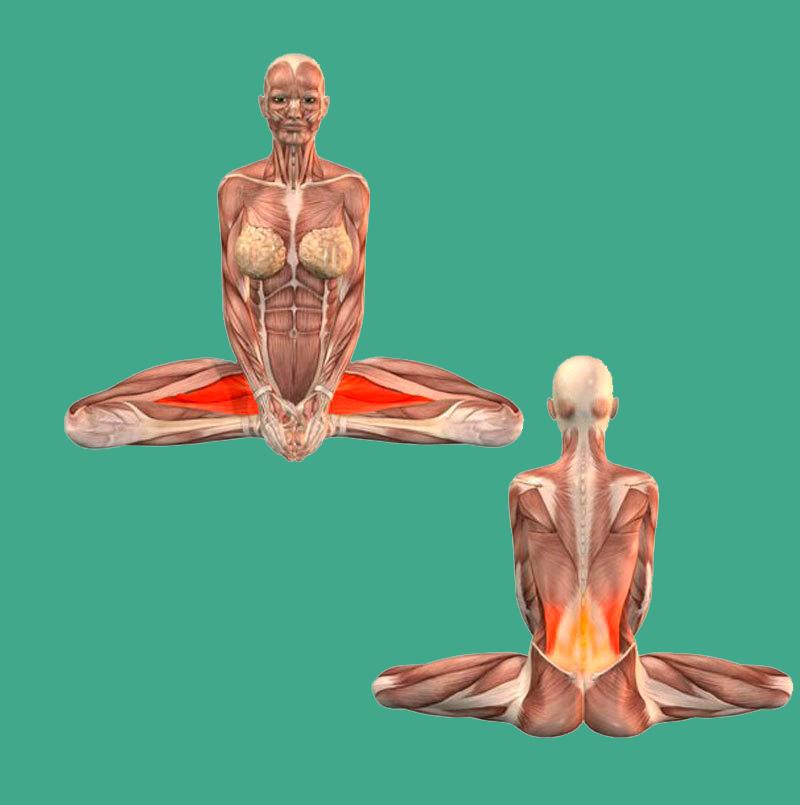 Четыре упражнения, которые нормализуют кровообращение