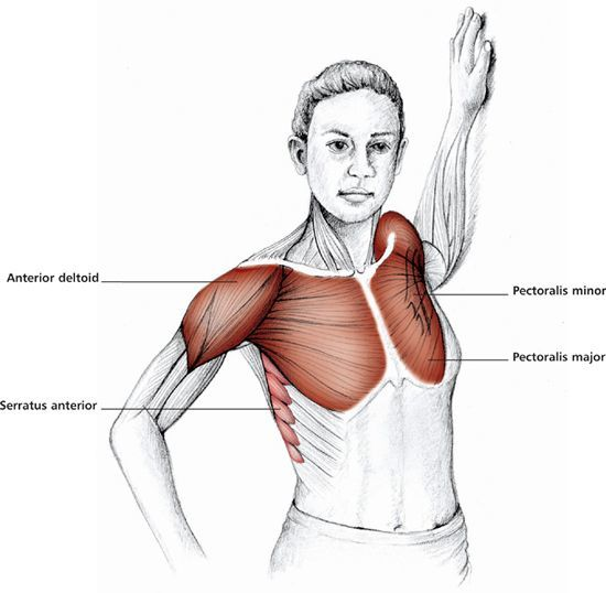 Stretching chest exercises