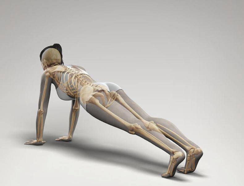 8 золотых упражнений для плоского живота