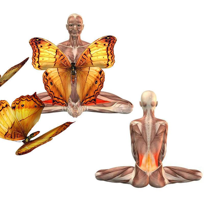 Долголетие начинается с заботы о сухожилиях