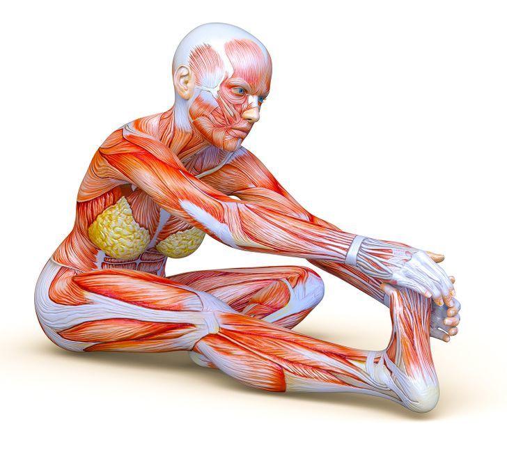 5 универсальных упражнений от болей в спине