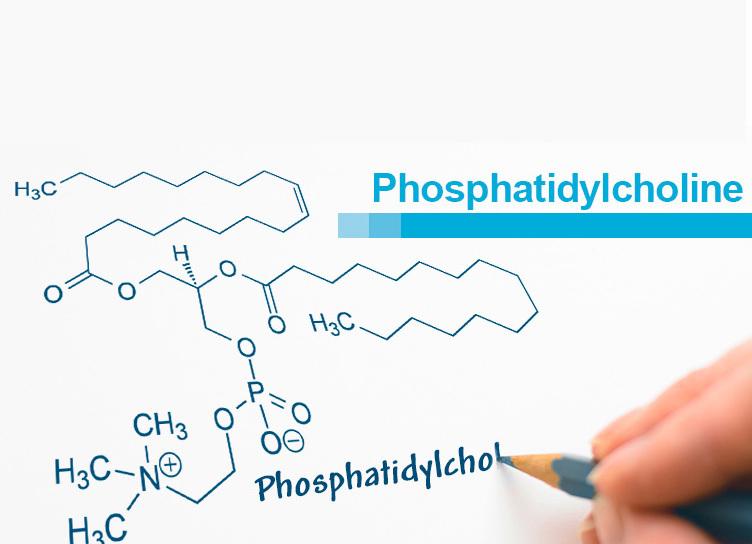 Фосфатидилхолин: влияние на здоровье на клеточном уровне