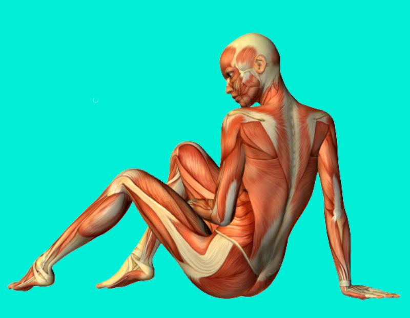 Методика похудения для ленивых: худеем, лежа на диване!
