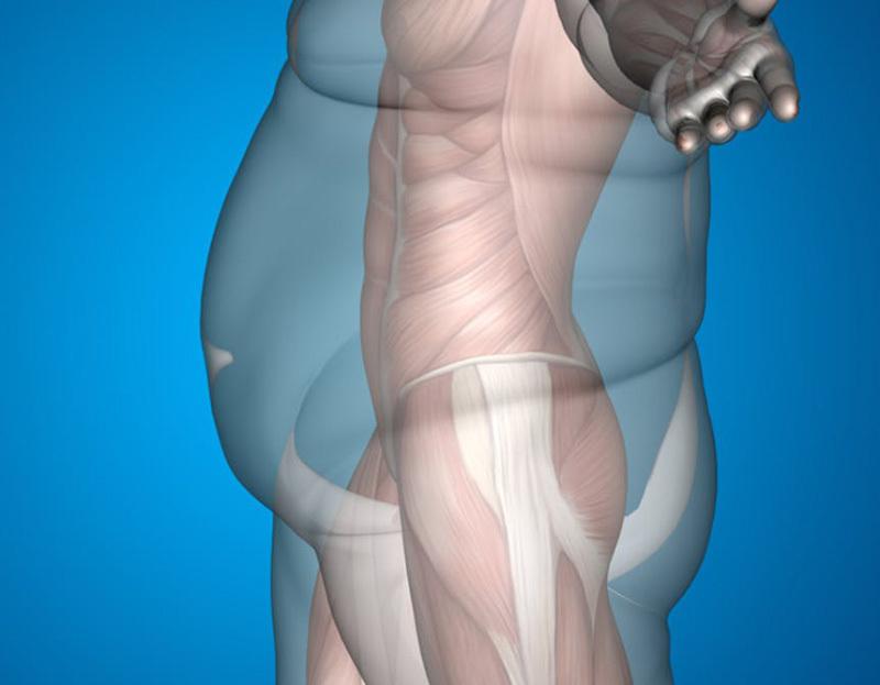3 причины, по которым мы набираем вес
