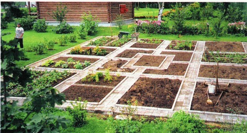 огород для ленивых фото