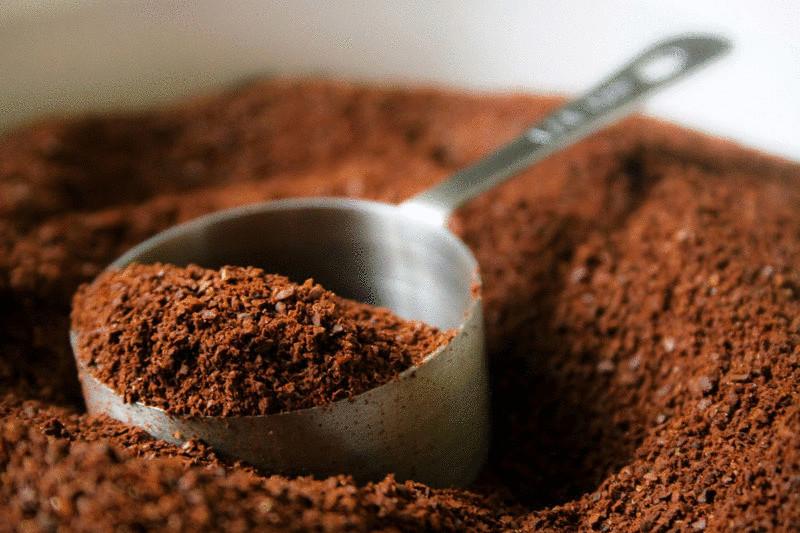 15 способов экологичного использования кофейной гущи