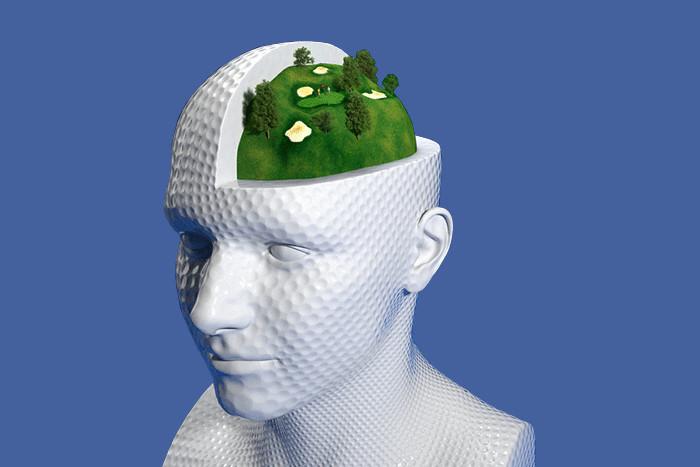 Google Maps в голове: *как работает система навигации нашего мозга*