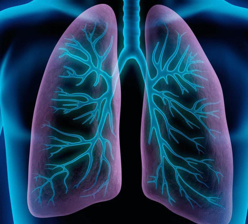 пневмония и бронхит картинки дом