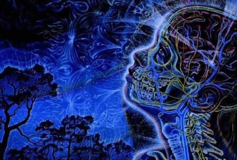 паразиты в голове человека симптомы и лечение