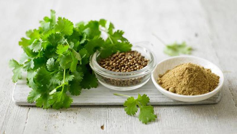 Кориандр незаменим для здоровья сосудов и снижения уровня холестерина