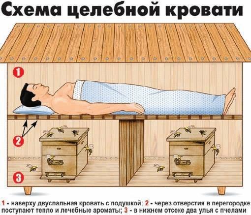 5 причин воспользоваться целебной кроватью