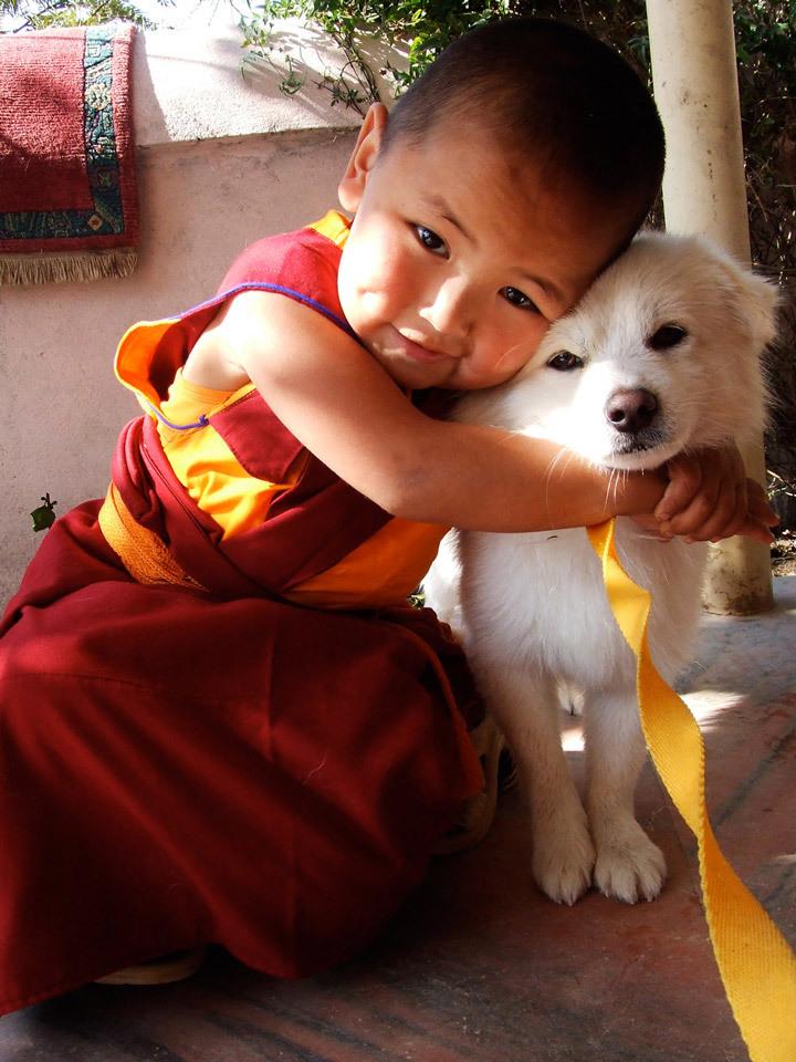 Тибетский календарь стрижки волос