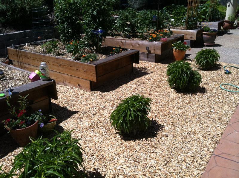 Огород для ленивых: правила и рекомендации