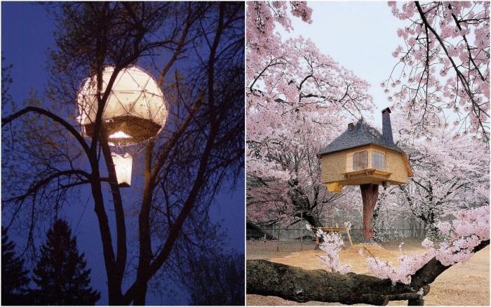 Впечатляющие домики на дереве.