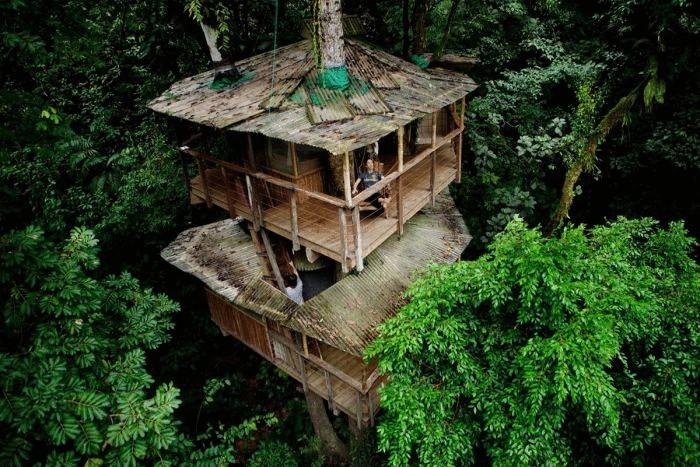 Эко-усадьба Finca Bellavista, расположенная на деревьях в тропическом лесу Коста Рики.